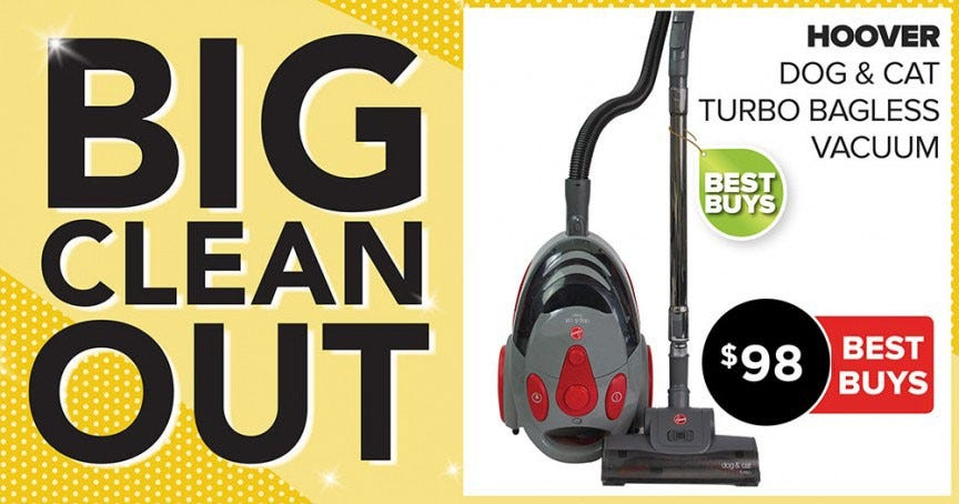 Hoover Dog & Cat Vacuum Big Clean Out 2019