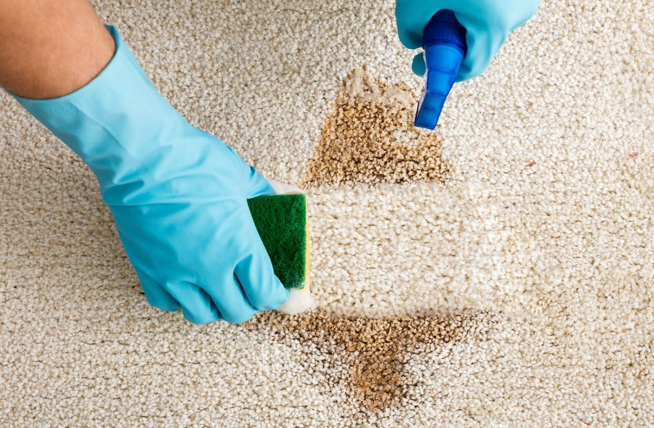 Using the best carpet stain remover